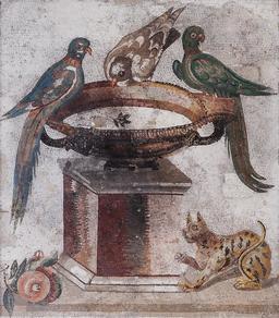 Mosaïque des oiseaux se désaltérant. Source : http://data.abuledu.org/URI/526bdb68-mosaique-des-oiseaux-se-desalterant