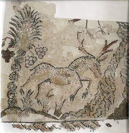 Mosaïque du cerf à Sousse. Source : http://data.abuledu.org/URI/51812ffc-mosaique-du-cerf-a-sousse