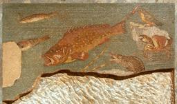 Mosaïque du crabe et des poissons à Ampurias. Source : http://data.abuledu.org/URI/517ec30e-mosaique-du-crabe-et-des-poissons-a-ampurias