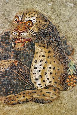 Mosaïque du léopard. Source : http://data.abuledu.org/URI/5291b385-mosaique-du-leopard