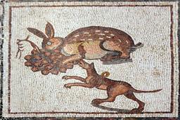Mosaïque du lièvre et du chien. Source : http://data.abuledu.org/URI/53053251-mosaique-du-lievre-et-du-chien