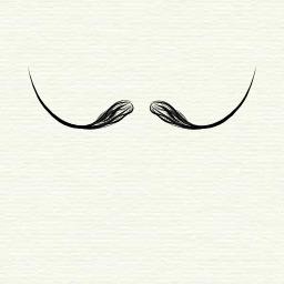 Moustache à la Dali. Source : http://data.abuledu.org/URI/503d3478-moustache-a-la-dali