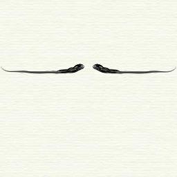 Moustache de style anglais. Source : http://data.abuledu.org/URI/503d356b-moustache-de-style-anglais