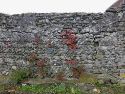 Mur de ferme en pierre en Béarn. Source : http://data.abuledu.org/URI/58669ae5-mur-de-ferme-en-pierre-en-bearn