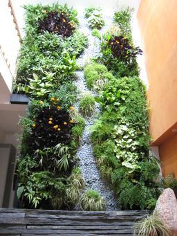 Mur végétal intérieur. Source : http://data.abuledu.org/URI/52fe54fa-mur-vegetal-interieur