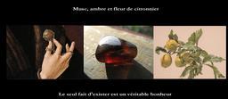 Musc, ambre et fleur de citronnier de Cendrars. Source : http://data.abuledu.org/URI/53d2c2d9-musc-ambre-et-fleur-de-citronnier-de-cendrars