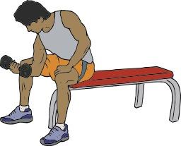 Musculation. Source : http://data.abuledu.org/URI/50431d15-musculation