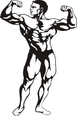 Musculation. Source : http://data.abuledu.org/URI/504a5b41-musculation