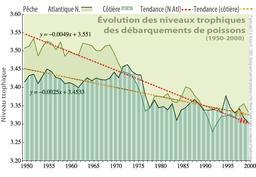 Niveaux trophiques en Atlantique nord. Source : http://data.abuledu.org/URI/50b7e5d7-niveaux-trophiques-en-atlantique-nord