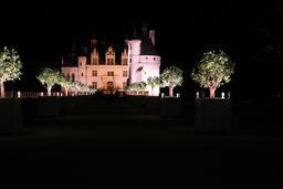 Nocturne de Chenonceau. Source : http://data.abuledu.org/URI/55e46177-nocturne-de-chenonceau