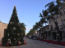 Noël en Floride. Source : http://data.abuledu.org/URI/585db817-noel-en-floride