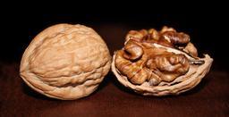 Noix et coquilles. Source : http://data.abuledu.org/URI/5064c6bf-noix-et-coquilles