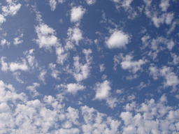 Nuages altocumulus. Source : http://data.abuledu.org/URI/501e3e5c-nuages-altocumulus
