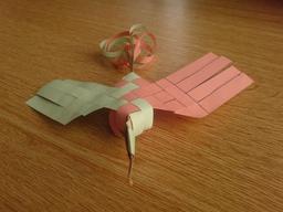 Oiseau de paradis 4. Source : http://data.abuledu.org/URI/52f16c3e-oiseau-de-paradis-4
