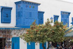 Orangers dans une rue de Sidi-Bou-Said. Source : http://data.abuledu.org/URI/51defdfe-orangers-dans-une-rue-de-sidi-bou-said