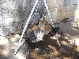 Outre en peau de bouc. Source : http://data.abuledu.org/URI/53601b2c-outre-en-peau-de-bouc