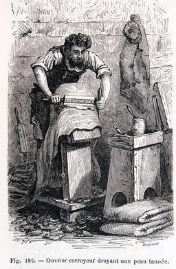 Ouvrier corroyeur nettoyant une peau. Source : http://data.abuledu.org/URI/56bbac06-ouvrier-corroyeur-nettoyant-une-peau