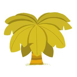 Palmier nain. Source : http://data.abuledu.org/URI/562902ba-palmier-nain