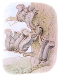 Panache Petitgris 11. Source : http://data.abuledu.org/URI/52c4b660-panache-petitgris-11