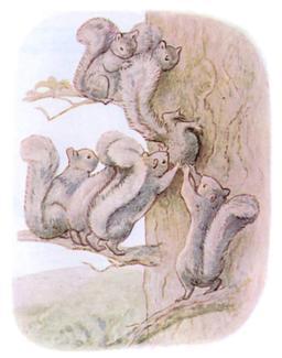 Panache Petitgris - 11. Source : http://data.abuledu.org/URI/56f98750-panache-petitgris-11
