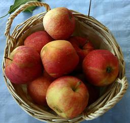 Panier de pommes rouges. Source : http://data.abuledu.org/URI/534278ff-panier-de-pommes-rouges