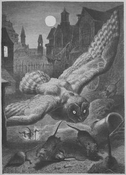 Panique nocturne chez les souris. Source : http://data.abuledu.org/URI/52ed657a-panique-nocturne-chez-les-souris