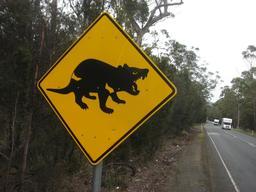 Panneau australien de risque de Diable de Tasmanie. Source : http://data.abuledu.org/URI/5137ab33-panneau-australien-de-risque-de-diable-de-tasmanie