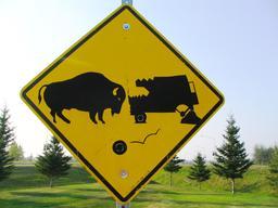 Panneau de risque de bison. Source : http://data.abuledu.org/URI/513798f8-panneau-de-risque-de-bison