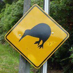 Panneau de risque de kiwi. Source : http://data.abuledu.org/URI/51379392-panneau-de-risque-de-kiwi