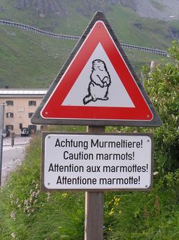 Panneau de risque de marmottes. Source : http://data.abuledu.org/URI/51379f2e-panneau-de-risque-de-marmottes