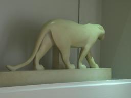 Panthère blanche. Source : http://data.abuledu.org/URI/52b2087f-panthere-blanche