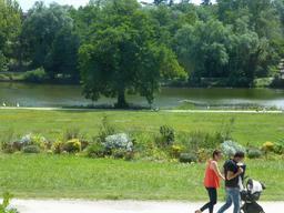 Parc de Bourran à Caudéran près de Bordeaux. Source : http://data.abuledu.org/URI/5826401d-parc-de-bourran-a-cauderan-pres-de-bordeaux