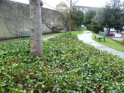 Parc de Ségur à Bordeaux. Source : http://data.abuledu.org/URI/56d16814-parc-de-segur-a-bordeaux