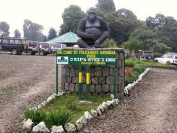 Parc national des volcans au Rwanda. Source : http://data.abuledu.org/URI/595beea1-parc-national-des-volcans-au-rwanda