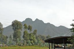 Parc National Des Volcans au Rwanda. Source : http://data.abuledu.org/URI/595befee-parc-national-des-volcans-au-rwanda