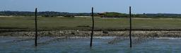 Parcs à huitres. Source : http://data.abuledu.org/URI/55bf1cd9-parcs-a-huitres