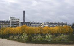 Paris en Automne. Source : http://data.abuledu.org/URI/53e2858f-paris-en-automne