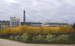 Paris en Automne. Source : http://data.abuledu.org/URI/53e2858f-paris-en-automne