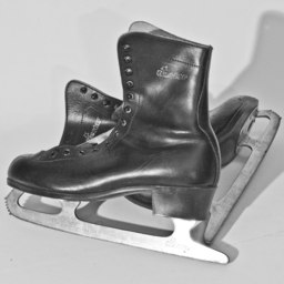 Patins à glace. Source : http://data.abuledu.org/URI/5020cade-patins-a-glace