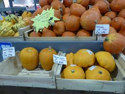 Patissons jaunes au marché couvert de Nancy. Source : http://data.abuledu.org/URI/581a39e3-patissons-jaunes-au-marche-couvert-de-nancy