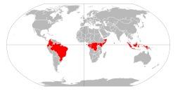 Pays par lesquels passe l'équateur. Source : http://data.abuledu.org/URI/56c39624-pays-par-lesquels-passe-l-equateur