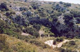 Paysage de garrigue. Source : http://data.abuledu.org/URI/51dfc918-paysage-de-garrigue