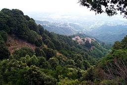 Paysage de Haute-Corse. Source : http://data.abuledu.org/URI/51dfca69-paysage-de-haute-corse