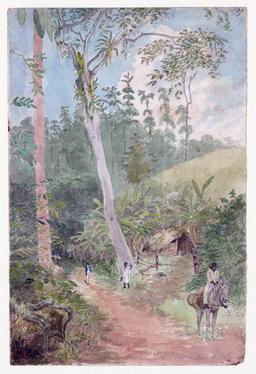 Paysage de Jamaïque au début du dix-neuvième siècle. Source : http://data.abuledu.org/URI/5369b214-paysage-de-jamaique-au-debut-du-dix-neuvieme-siecle