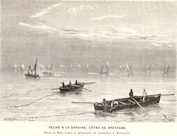 Pêche à la sardine en 1866. Source : http://data.abuledu.org/URI/5945787c-peche-a-la-sardine-en-1866