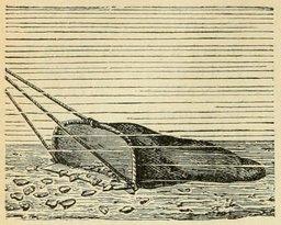 Pêche aux huitres au XIXème siècle. Source : http://data.abuledu.org/URI/524edf41-peche-aux-huitres-au-xixeme-siecle