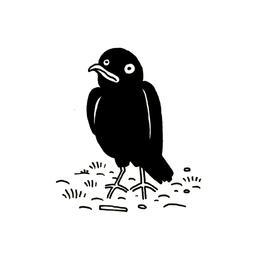Petit corbeau. Source : http://data.abuledu.org/URI/52d72687-petit-corbeau