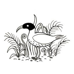Petit ibis. Source : http://data.abuledu.org/URI/52d7ab58-petit-ibis