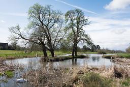 Petit lac écossais au printemps. Source : http://data.abuledu.org/URI/58750cea-petit-lac-ecossais-au-printemps