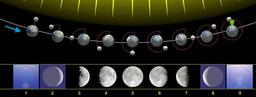 Phases lunaires. Source : http://data.abuledu.org/URI/533b0c78-phases-lunaires
